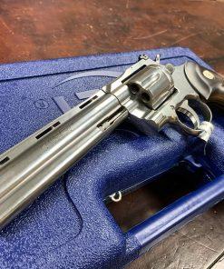 Royal Blue Colt Python